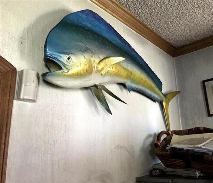 blue and yellow model of a fish hanging on a burnt wall