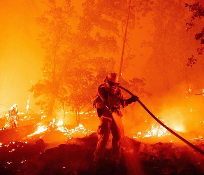 A man in firefighter gear spraying a powerful hose in a burning forest