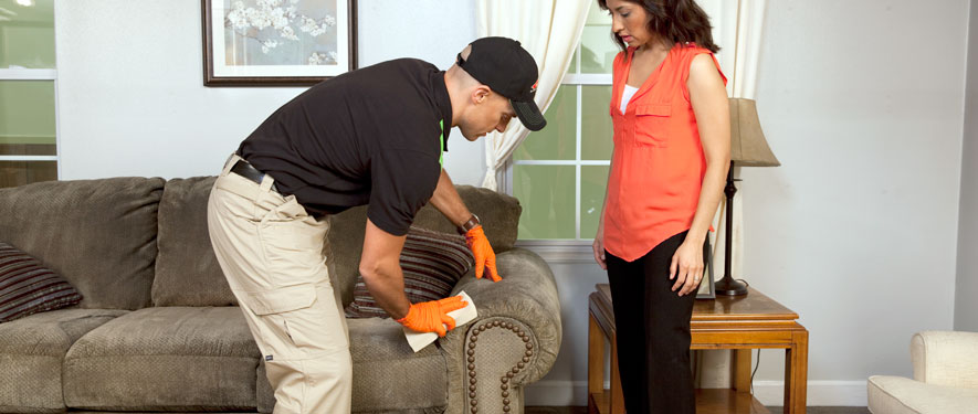 Chino, CA carpet upholstery cleaning